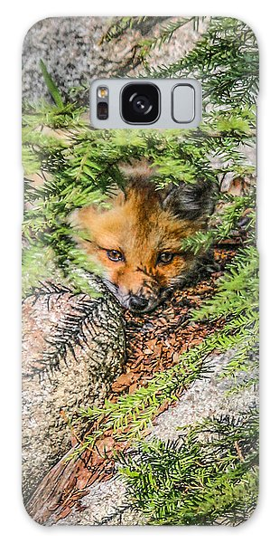 #0527 - Fox Kit Galaxy Case