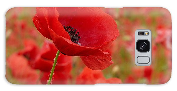 Red Poppies 3 Galaxy Case
