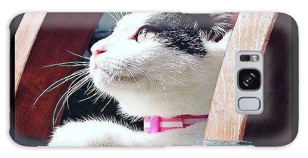 Koneko Means A Kitten Galaxy Case