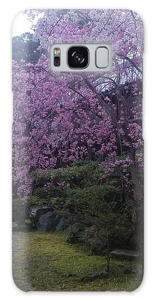 Shidarezakura Mean A Drooping Cherry Tree  Galaxy Case