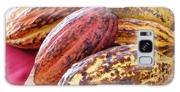 A Pile Of Cacao Pods Galaxy Case