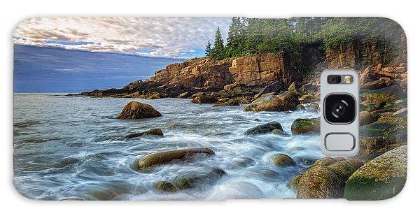 Otter Galaxy Case - Acadia by Rick Berk