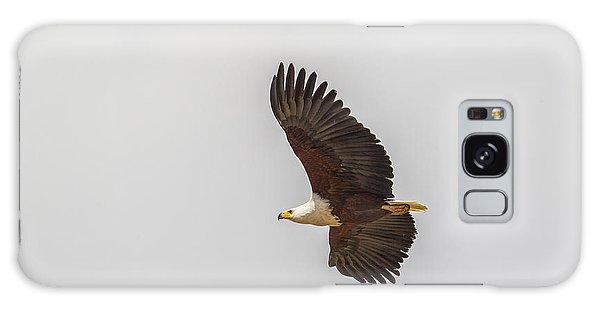 African Fish Eagle Galaxy Case