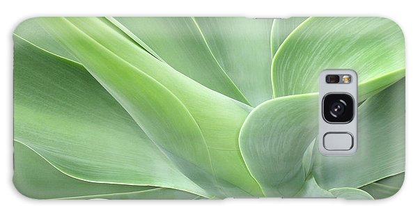 Agave Attenuata Abstract Galaxy Case