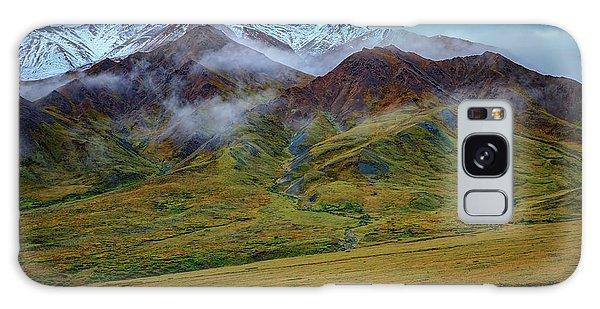Denali Galaxy Case - Alaskan Foothills by Rick Berk