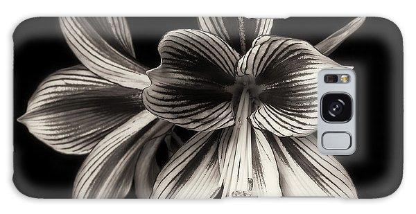 Amaryllis 'papilio Improved' Galaxy Case