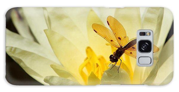 Amber Dragonfly Dancer 2 Galaxy Case