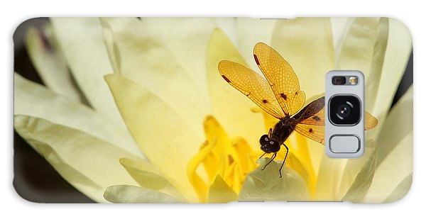 Amber Dragonfly Dancer 2 Galaxy Case
