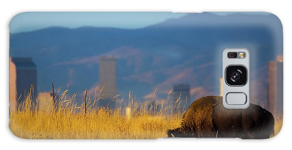 American Bison And Denver Skyline Galaxy Case