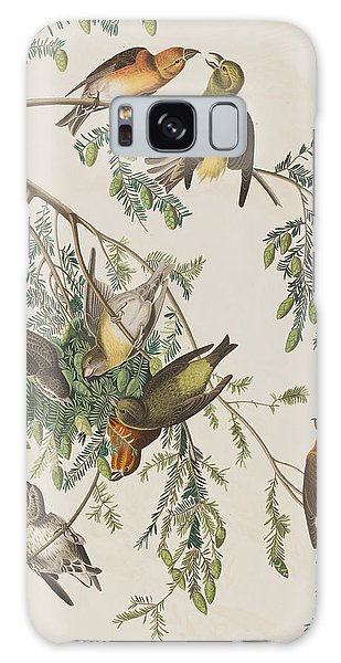 American Crossbill Galaxy Case by John James Audubon