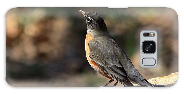 American Robin On Rock Galaxy Case