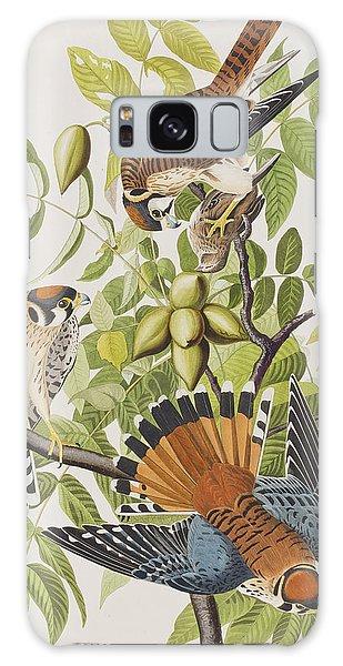 American Sparrow Hawk Galaxy S8 Case