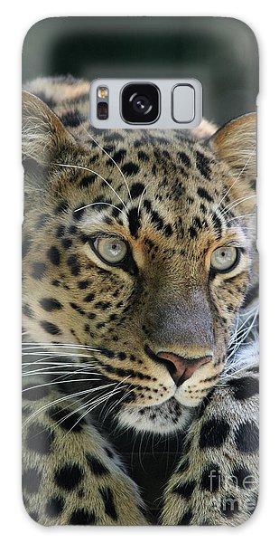 Amur Leopard #2 Galaxy Case