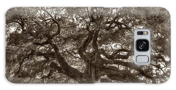 Angel Oak Live Oak Tree Galaxy Case