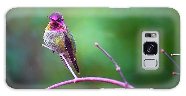 Anna Hummingbird Vii Galaxy Case