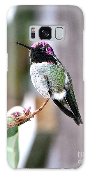 Anna's Hummingbird Galaxy Case