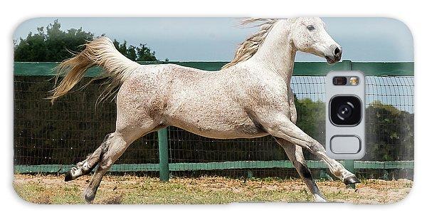 Arabian Horse Running Galaxy Case