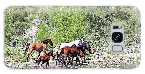 Arizona Wild Horses Galaxy Case