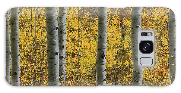 Aspen In Autumn At Mcclure Pass Galaxy Case