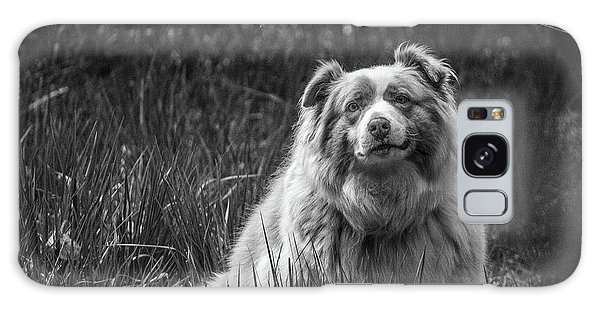 Australian Shepherd Dog Galaxy Case