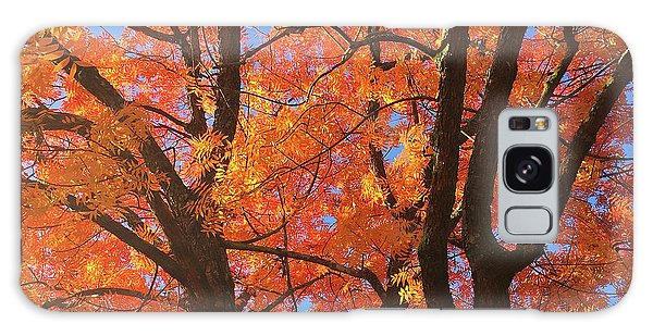 Autumn Orange Galaxy Case