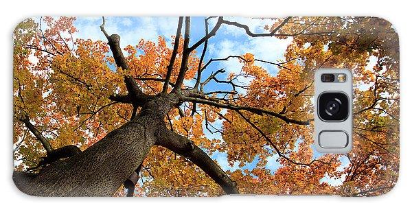 Colours Galaxy Case - Autumn Tree by Nailia Schwarz