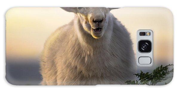 Sheep Galaxy Case - Baa Baa by Angel Ciesniarska