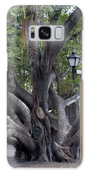 Banyan Tree, Maui Galaxy Case