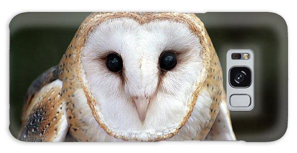 Barn Owl Galaxy Case
