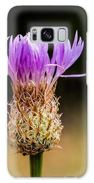 Basket-flower Opening Galaxy Case