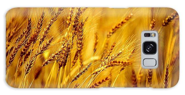 Bearded Barley Galaxy Case