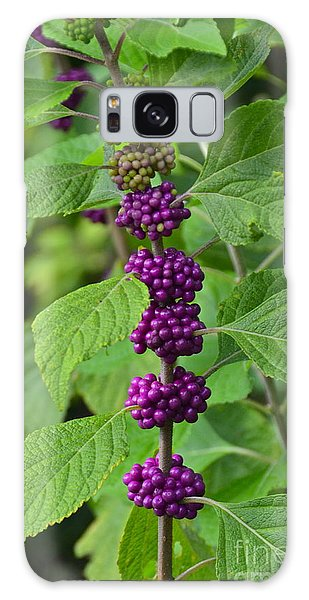 Beautyberry Galaxy Case by Carol  Bradley