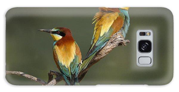 Bee-eater Galaxy Case