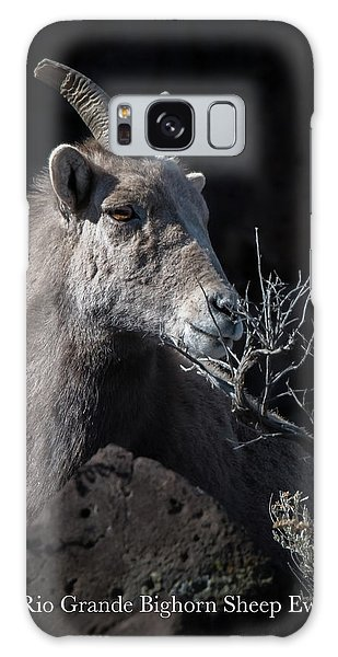 Bighorn Ewe Galaxy Case