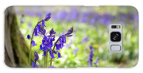Bluebell Galaxy Case - Bluebells by Jane Rix