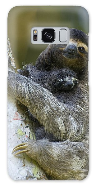 Galaxy Case featuring the photograph Brown-throated Three-toed Sloth by Suzi Eszterhas