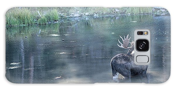 Bull Moose Reflection Galaxy Case