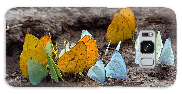 Butterflies Eating Minerals Galaxy Case