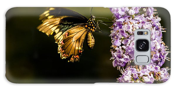 Butterfly Galaxy Case by Jay Stockhaus