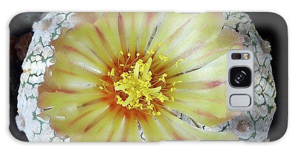 Cactus Flower 2 Galaxy Case
