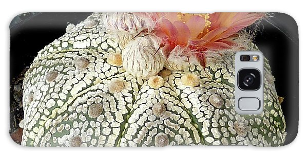 Cactus Flower 4 Galaxy Case