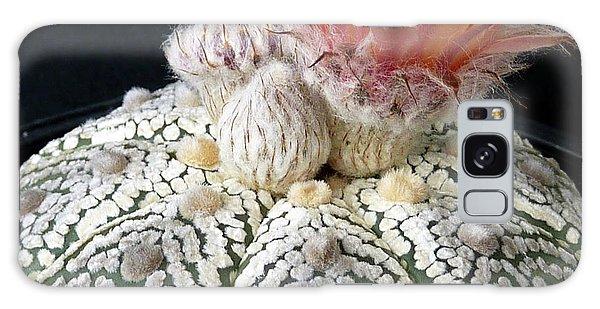 Cactus Flower 6 Galaxy Case