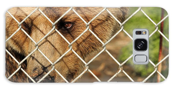 Caged Bear Galaxy Case