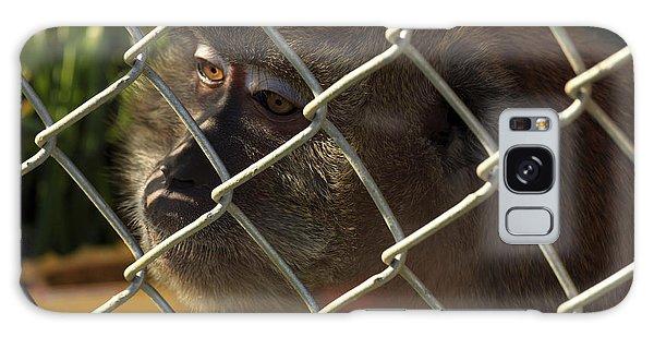 Caged Monkey Galaxy Case