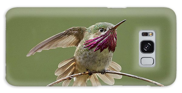 Calliope Hummingbird Galaxy Case
