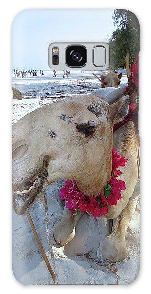 Exploramum Galaxy Case - Camel On Beach Kenya Wedding3 by Exploramum Exploramum