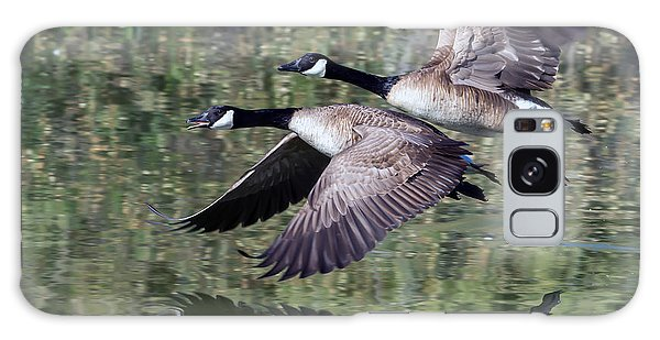 Canada Geese Galaxy Case by Tam Ryan