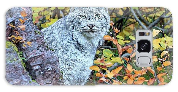 Canada Lynx Galaxy Case by Jack Bell