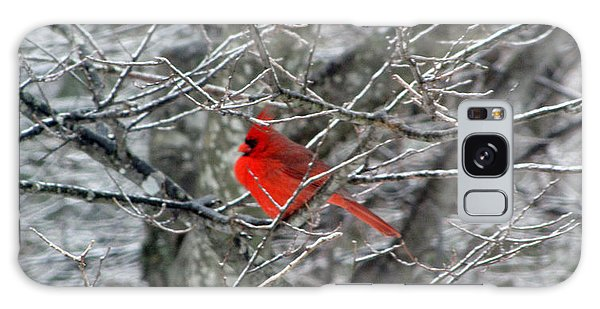 Cardinal On Icy Branches Galaxy Case by Amy Tyler