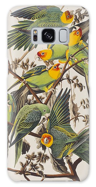 Parakeet Galaxy Case - Carolina Parrot by John James Audubon